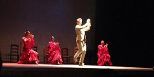 Flamenco in Centro Cultural Villa de Nerja