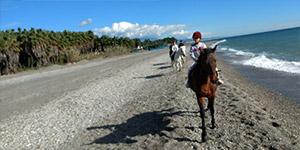 Horse riding Almayate beach